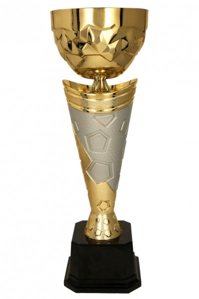 Trophy with silver design