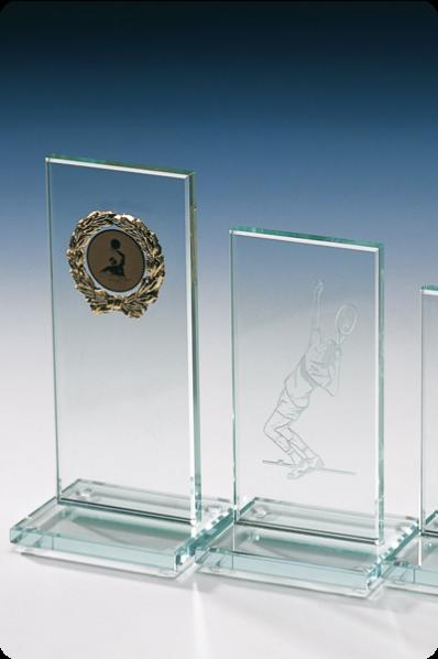 Simple Glass Rectangular Plaque